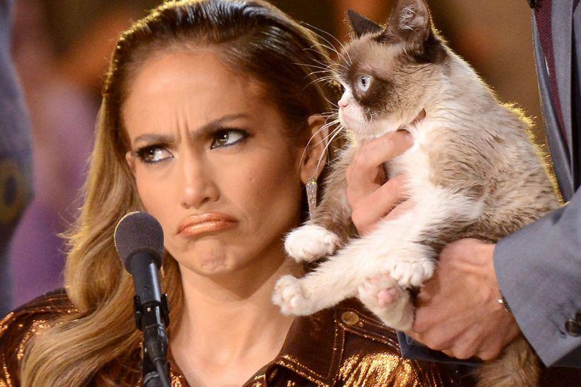 Grumpy-Cat-on-American-Idol