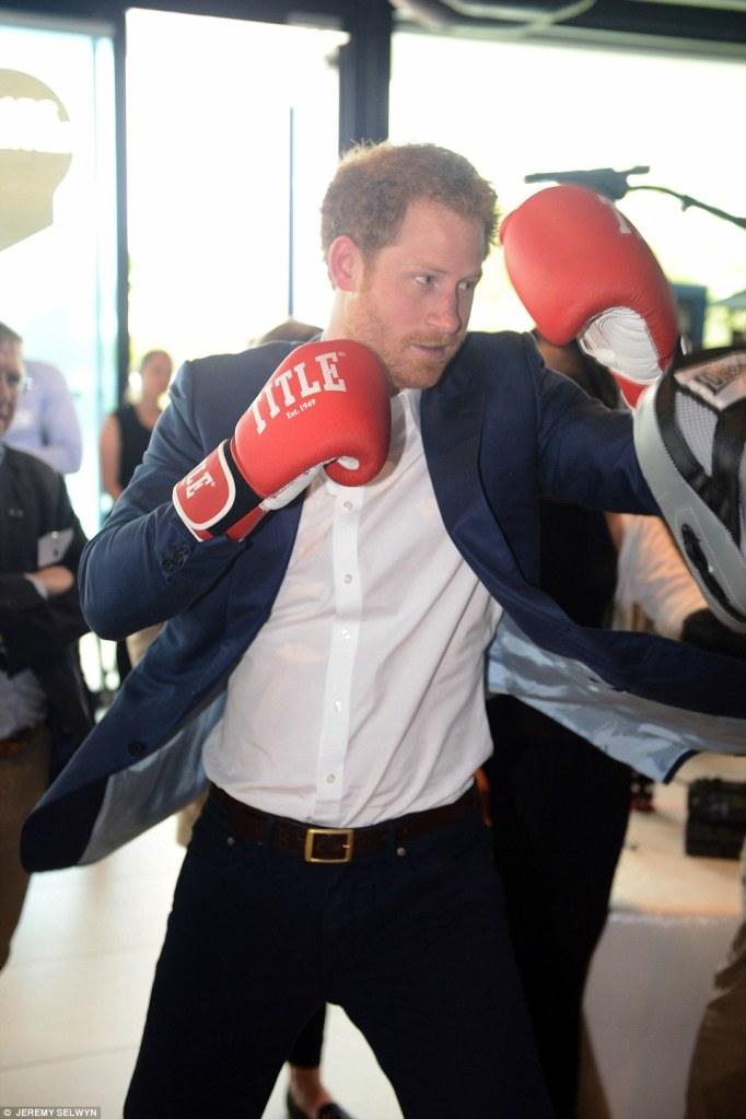 boxe-harry