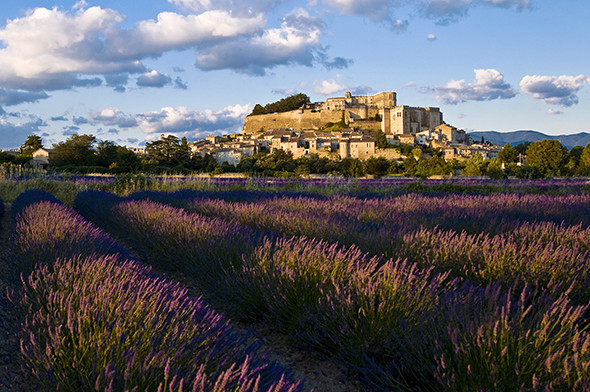 France, Rhone Alpes region, Drome, Grignan village, well-knowed for its castle where Madam Sevigne lived and died in 1696 and its lavender fields
