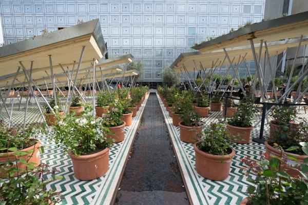 jardin-orient5