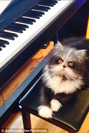 atchoum-piano