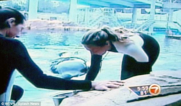 orque-attaque